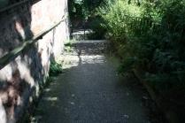 Barrace Steps L